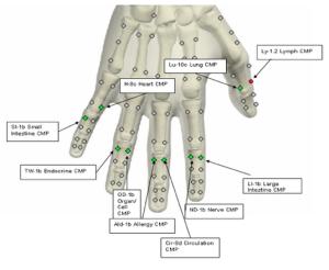 hand_meridians